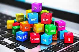 Domain (Alan adı)'in tarihsel gelişimi önemli dönüm noktaları
