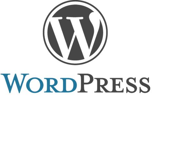WordPress Nedir ? Nasıl Kurulur ?